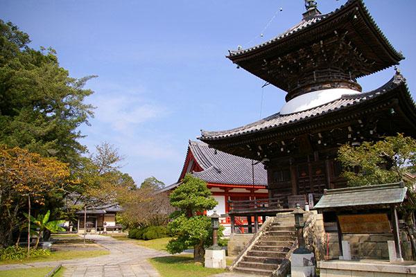 高山寺 多宝塔と境内
